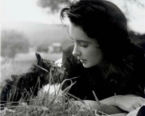 Liz Taylor par Peter Bash