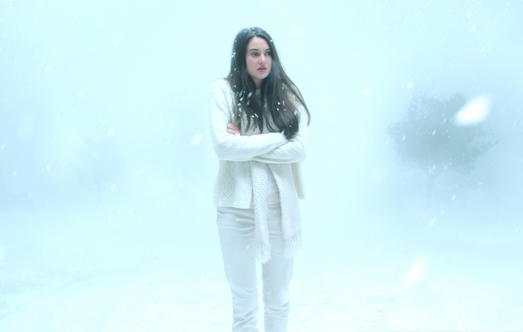 COMP_photo WHITE BIRD IN A BLIZZARD (c) Matt Kennedy-Why Not Productions-Desperate Pictures - OK